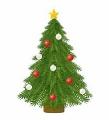 世界一のクリスマスツリーが神戸に植樹されました