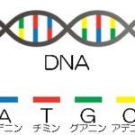 ゲノム編集で未来を変える! 神のテクノロジー最前線!